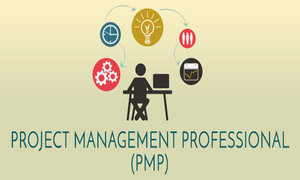 PMP Certification Online Course.