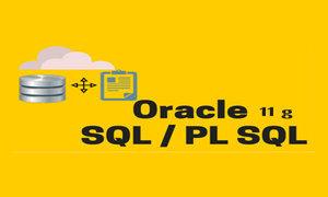 Online Oracle SQL PL SQL Training