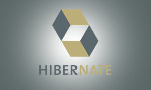 Online Hibernate Training