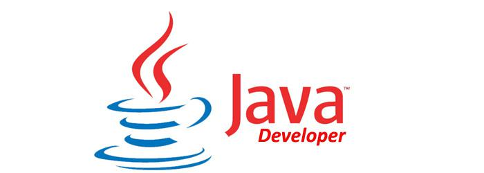 roles and responsibilities of a core java developer with the complete digitisation taking over the world numerous jobs have come to the forefront