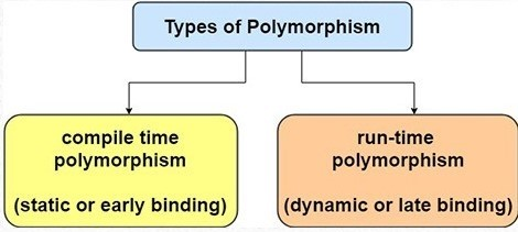 poly11