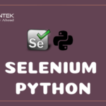 selenium python