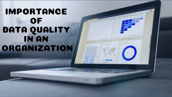 Importance of Data Quality in an Organization
