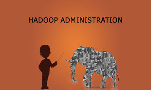 Hadoop Administration Training