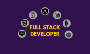 full stack developer course