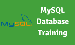MySQL Database Training