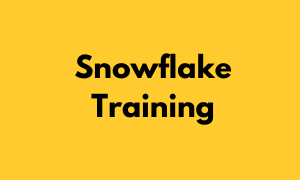Snowflake Training